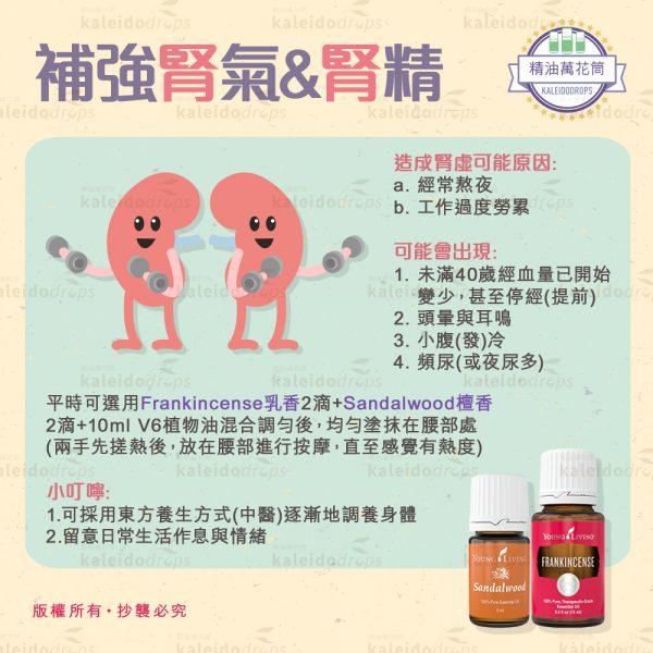 補強腎氣&腎精