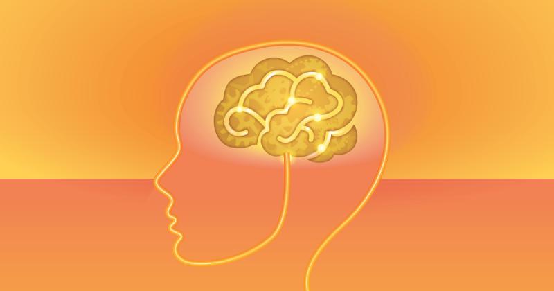 Brain超級食物