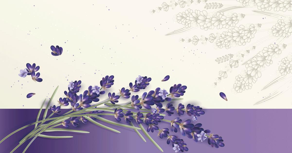 Lavender森活