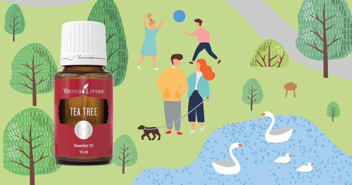生活中需要Tea Tree茶樹的理由•家居篇II